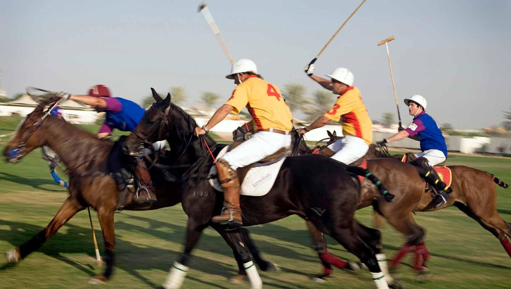 Polo kongernes sport